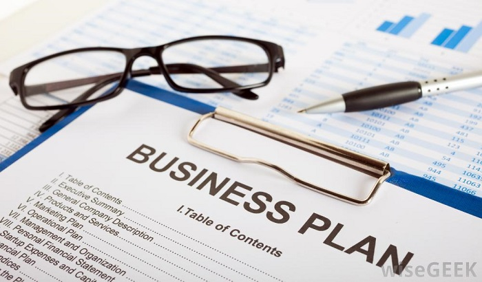 dumb business startup mistakes, business plan